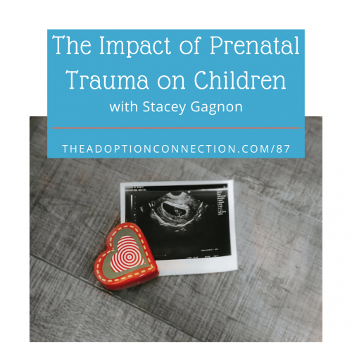 infant adoption, ACES, trauma